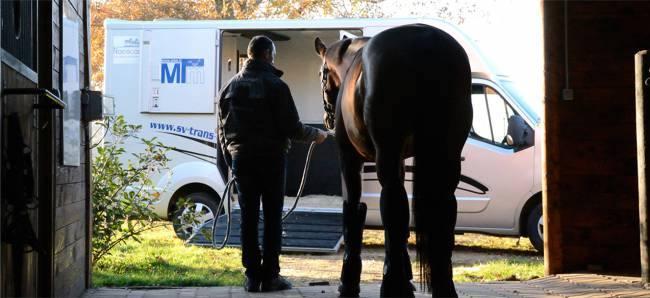 sv-trans-transport-de-chevaux_1423046974_0